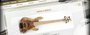 NDHS - New Bass guitars 2013